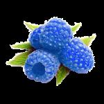 BlueRasberry-150x150